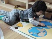 Ariile curriculare Montessori. Știinte și activități culturale.
