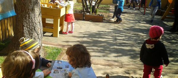Grupele mixte de vârstă - Montessori