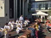 O lecție de karate