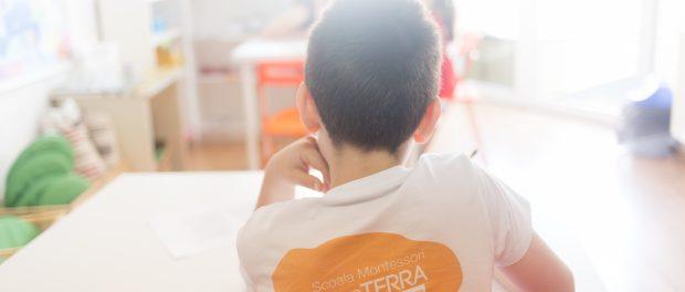 10 ani de Montessori în România