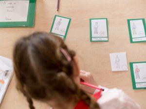 Școala secundară/ liceul Montessori, mediul pregătit pentru 12-18 ani.